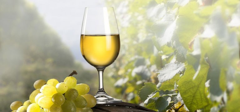 degustácia tokajského vína